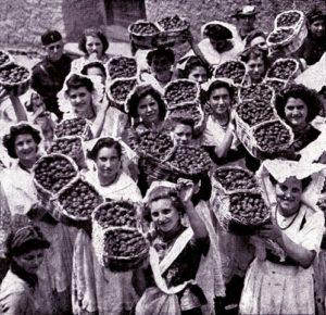 Sagra delle fragole, strawberry festival of Lake Nemi, Roma Italy